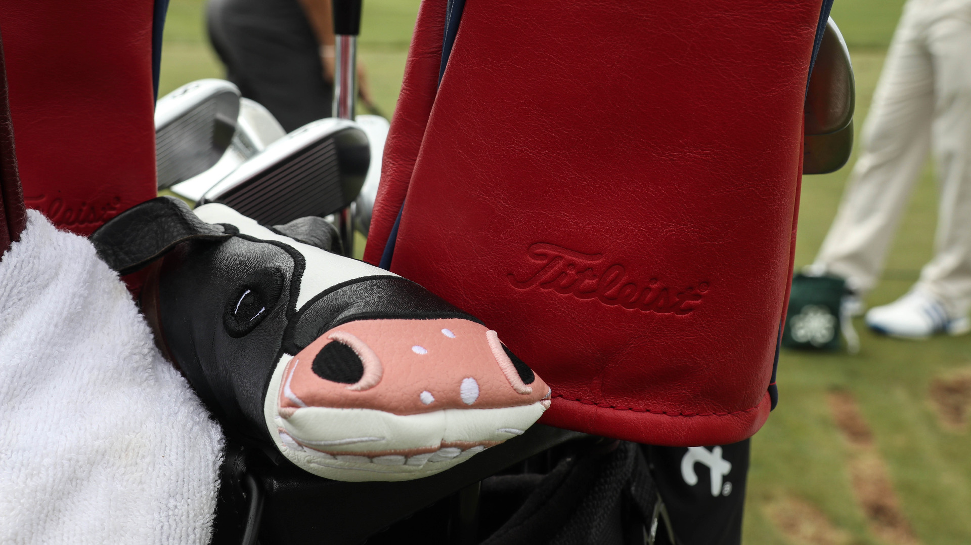 A look inside Bud's Titleist bag to see the de...